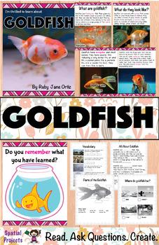 All About Goldfish Nonfiction Unit