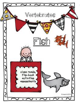 Fish / Vertebrates