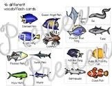 Fish Vocab Cards