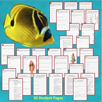 Fish Warm Ups Interactive Notebook Pages Bell Ringers