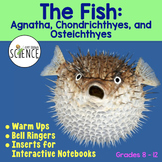 Fish Warm Ups, Bell Ringers, Interactive Notebook Inserts