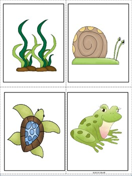 ESL Vocabulary/Conversation Building Cards-Fish and Pond Life-Newcomers Too!