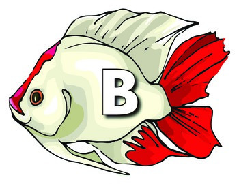 Fished Themed Alphabet Matching Cards: (Upper/lowercase Matching)