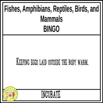 Fishes, Amphibians, Reptiles, Birds, and Mammals BINGO