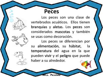 Fishes Peces-Bilingual Stars Mrs Partida