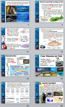 Fishes PowerPoint Presentation (Biology / Zoology) - 69 slides