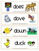 Multiple Meaning Words - Word Cards with Dual Pictures