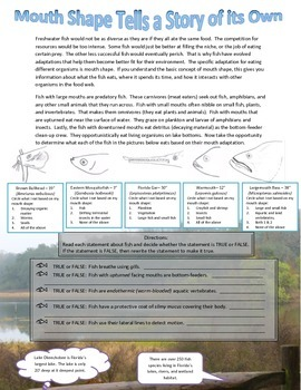 Fishy Field Journal: Eutrophic Water Testing & Mouth Shape/Diet Activity