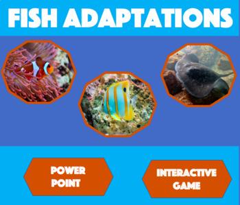 Fish Adaptations