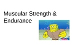 Fitnessgram Muscular Strength and Endurance Powerpoint