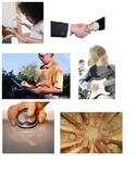 Five 5 senses foldable science station center cut paste sort kindergarten ESL
