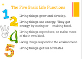 Five Basic Life Functions Poster