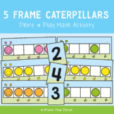 Five Frame Caterpillars