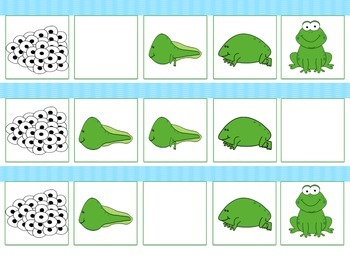 Life Cycle of a Frog - 5 file folder activities