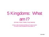 Five Kingdom Riddles