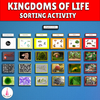 Five Kingdoms of Life Classification Cards