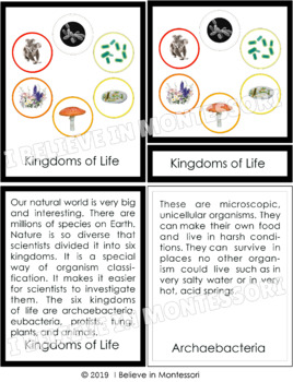 a description of the five kingdoms of life Results for kingdoms of life there are 10 total matches we found 10 jams and.