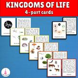 Kingdoms of Life Montessori 4-part cards
