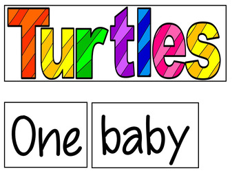 Five Little Turtles  (A Counting Pocket Chart Activity)
