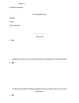 Five Paragraph Essay - The Essential Packet