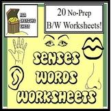 Five Senses Words Worksheets No prep, Autism, ABA