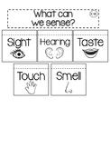 Five Sense Interactive Journal
