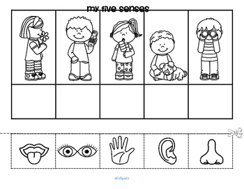 Five Senses Theme Math, Literacy and Science Activities ...