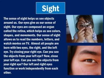 Five Senses Activity | 5 Senses PowerPoint | Five Senses Science