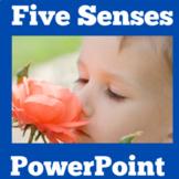Five Senses Activity |  PowerPoint