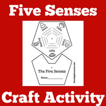 Five Senses Activity   5 Senses PowerPoint   Five Senses Science