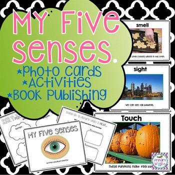 Five Senses Kindergarten and First Grade