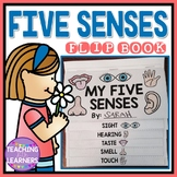 Five Senses Activity