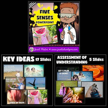 Five Senses Activities BUNDLE (PowerPoint, Flipbook and Craft)