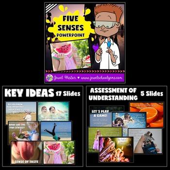 Five Senses Activities BUNDLE (PowerPoint, Flipbook and Craft)