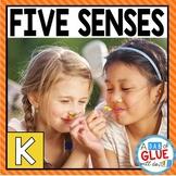 Five Senses Science Unit  (Distance Learning)