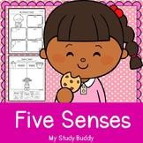 Five Senses Activities (Five Senses Kindergarten, Five Senses Worksheets)