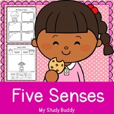 Five Senses Activities (Kindergarten)