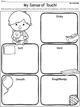 Sense Of Touch Worksheets For Kindergarten