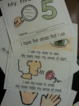 Five Senses Activities Pack English and Spanish Cscope common core