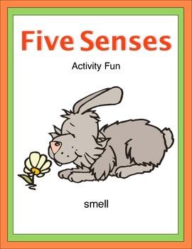 Five Senses Activity Fun