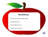 Five Senses Activity Packet - Apple Tasting!