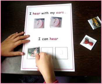 Five Senses Adapted Book for Special Education and Autism