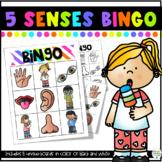 Five Senses Bingo