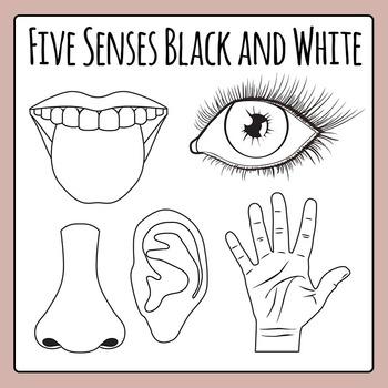 Five Senses Black and White Line Art Clip Art Pack for Com