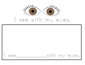 Five Senses Book
