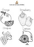 Five Senses- Book, Smell worksheet, & Assessment