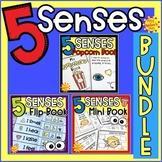 Five Senses Activities | Five Senses BUNDLE