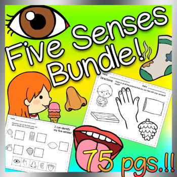 Five Senses Bundle