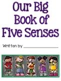 Five Senses Class Book