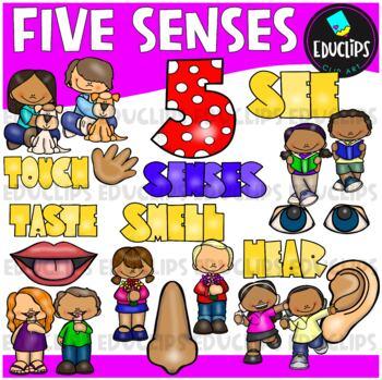 Five Senses Clip Art Bundle {Educlips Clipart}